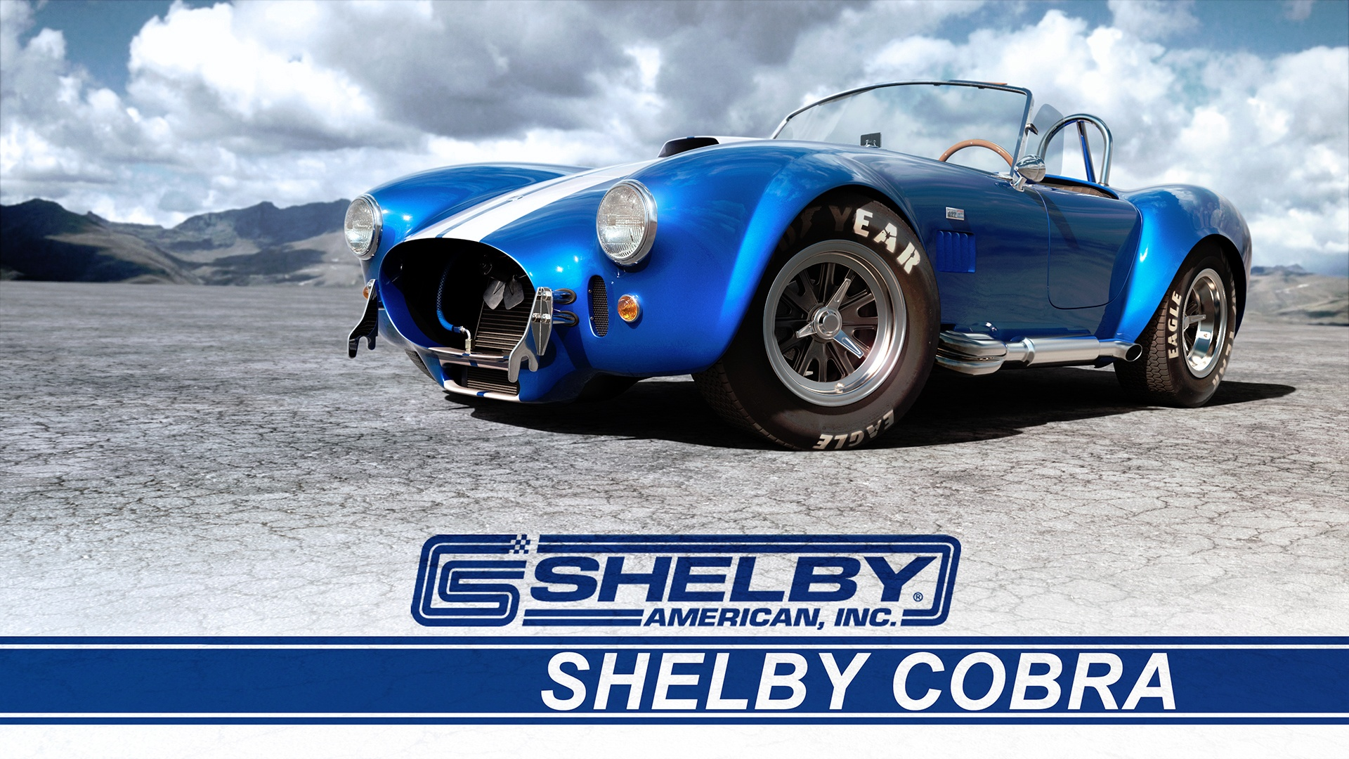 Tim Feher - Shelby Cobra 427