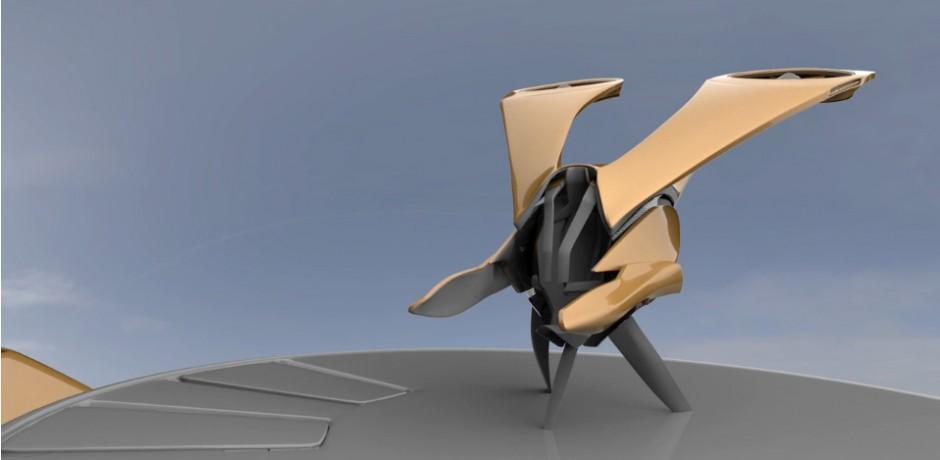 lotus-firefly-03
